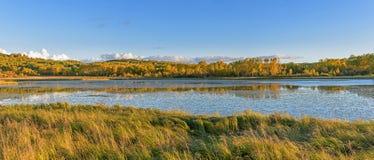 Słońce jezioro i Biała brzoza w jesieni zdjęcie royalty free