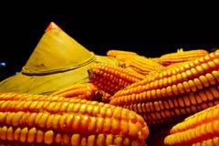 Słońce kapeluszowa Biała kukurudza zasadzająca na kukurudzy, fedrunek kukurydzani rolnicy fotografia royalty free