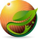 Słońce liścia ludzki logo royalty ilustracja