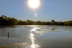 Słońce na jeziorze Zdjęcie Royalty Free