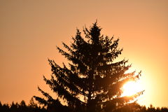 Słońce na powietrzu Obraz Royalty Free