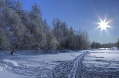 słońce narciarski śnieżny ślad Obrazy Royalty Free