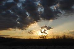 Słońce promieni połysk przez chmur Fotografia Royalty Free
