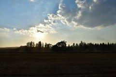 Słońce promienie błyszczą od chmur nad polem dokąd żniwiarz ciie Czas żniwa latania pył od syndykatów żniwiarzów Obraz Royalty Free