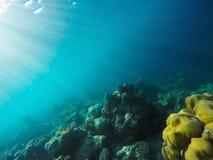 Słońce promienie penetruje przez oceanu jaśnienia na i wod morskich tropikalne rafy koralowe obrazy royalty free