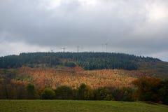 Słońce promienie robią ich sposobowi przez ciemnych chmur i iluminują czerwonego jesieni pole obrazy royalty free