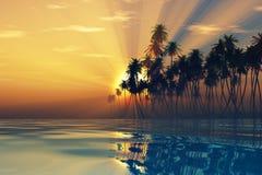 Słońce promienie wśrodku kokosowych palm Obrazy Royalty Free