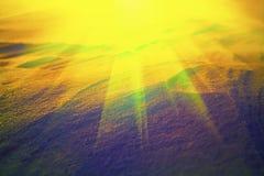 Słońce promienie w śniegu Fotografia Stock