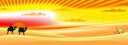 Słońce pustyni światło Obraz Royalty Free