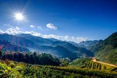Słońce raca na niebieskim niebie w górze Fotografia Stock