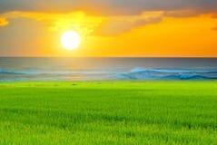 Słońce set Obrazy Stock