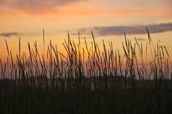 Słońce set. Zdjęcia Stock