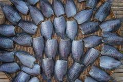 Słońce susząca ryba w rynku Obraz Stock