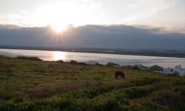 Słońce ustawiający pod rzeką zdjęcia royalty free