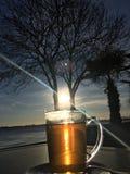 Słońce w filiżance Fotografia Royalty Free
