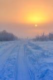 Słońce w mgle fotografia stock