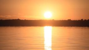 Słońce wzrasta nad jeziorem lub rzeką zbiory