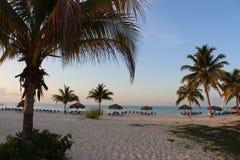 Słońce wzrost na plaży -2 Obrazy Royalty Free