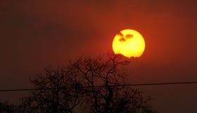 Słońce z twarzą Zdjęcia Royalty Free