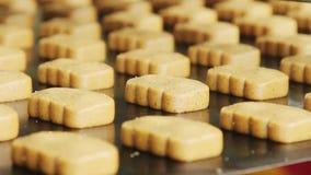 Słodcy ciastka na produkci linii Piekarnia na linii produkcyjnej przy karmowym czynnikiem zdjęcie wideo