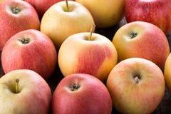 Słodcy dojrzali jabłka zdjęcia royalty free
