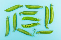 Słodcy młodzi zieleni grochy w strąkach na błękitnym tle zdjęcia royalty free