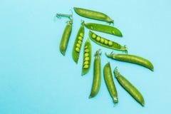 Słodcy młodzi zieleni grochy w strąkach na błękitnym tle Przestrzeń dla teksta fotografia stock