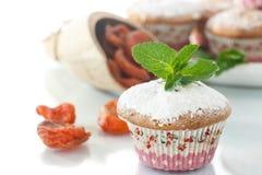 Słodcy muffins z wysuszonymi morelami Obraz Royalty Free