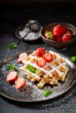 Słodcy opłatki z truskawkami i nowymi liśćmi fotografia royalty free