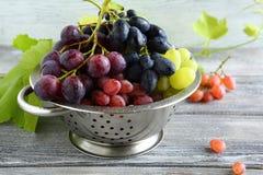 Słodcy winogrona w metalu colander obrazy royalty free