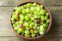 Słodka świeża agrestowa jagoda obraz stock