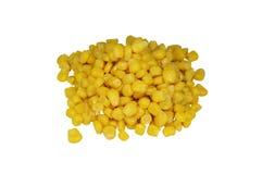 Słodka żółta kukurudza na białym tle Obrazy Stock