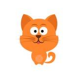 słodka czerwony kot Zdjęcie Stock