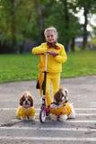 Słodka dziewczyna w żółtej smokingowej katatsya hulajnoga z psami w parku obrazy stock