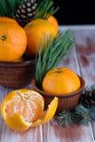 Słodka i soczysta mandarynka na stole z sprigs świerczyna obraz stock