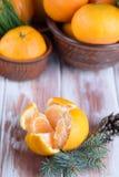 Słodka i soczysta mandarynka na stole z sprigs świerczyna Zdjęcie Stock