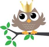 Słodka mała sowa z złotą koroną Obraz Royalty Free