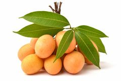 słodka Mariańska śliwkowa tajlandzka owoc odizolowywająca na białym tle Obraz Stock