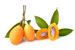 słodka Mariańska śliwkowa tajlandzka owoc odizolowywająca na białym tle Zdjęcia Royalty Free