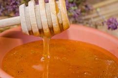 Słodka miodowa łyżka Zdjęcie Stock