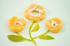 Słodka pomarańcze Fotografia Stock