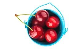 Słodka wiśnia w wiadrze Zdjęcie Royalty Free