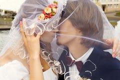 Słodki buziak Obrazy Royalty Free