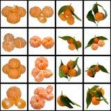 Słodki dojrzały Tangerine. Obraz Stock