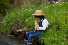 Słodki dziecko, bawić się na małej rzece z kaczątkami Zdjęcie Royalty Free