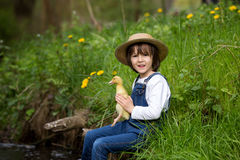Słodki dziecko, bawić się na małej rzece z kaczątkami Zdjęcia Stock