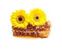 Słodki honeycomb zdjęcie royalty free