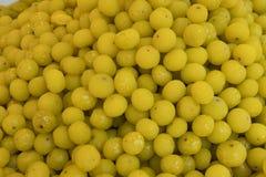 Słodki Indiański agrest Fotografia Stock
