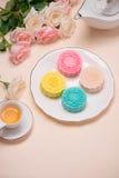 Słodki kolor śnieżny skóry mooncake Tradycyjny w połowie jesieni festiv Obraz Royalty Free