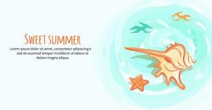 Słodki lato sztandar z śmietanka Barwiącym Dennym Shell royalty ilustracja